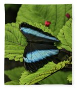 Morpho Butterfly Fleece Blanket