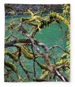 Moss And Trees Fleece Blanket