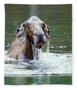 Mossy Moose Fleece Blanket
