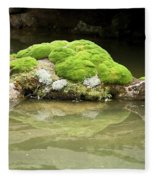 Mossy Turtle Rock Fleece Blanket