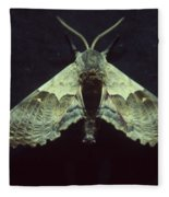 Moth At Texaco Station Fleece Blanket