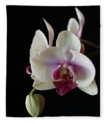Moth Orchid 2 Fleece Blanket