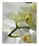Moth Orchids - White Fleece Blanket