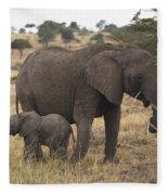 Mother And Baby Elephant Fleece Blanket