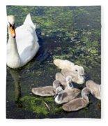 Mother Swan And Baby Cygnets Fleece Blanket