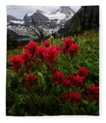 Mount Assiniboine Canada 11 Fleece Blanket