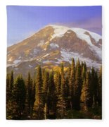Mount Raineer 2 Fleece Blanket