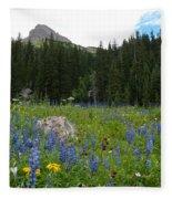Mount Sneffels Lupine Landscape Fleece Blanket
