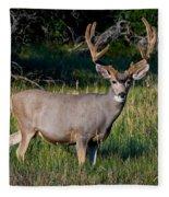 Mountain Buck  Fleece Blanket