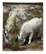 Mountain Goat Nanny And Kid Foraging At Columbine Lake - Weminuche Wilderness - Colorado Fleece Blanket