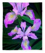 Mountain Iris In Flower California Fleece Blanket