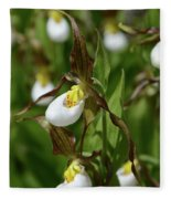 Mountain Lady Slippers Up Close Fleece Blanket