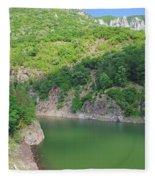 Mountain Lake Fleece Blanket