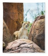 Mountain Lion Fleece Blanket