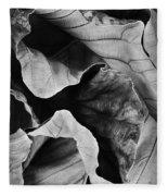 Mounts Botanical Garden 2363 Fleece Blanket