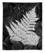 Mounts Botanical Garden 2365 Fleece Blanket