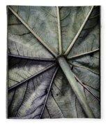Mounts Botanical Gardens 2360 Fleece Blanket