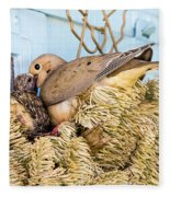 Mourning Dove And Chick Fleece Blanket