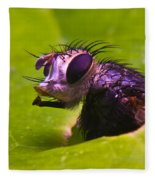 Mr. Fly Fleece Blanket