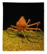 Mr. Krabbs Fleece Blanket