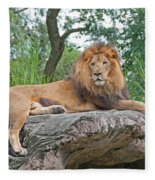 Mr Majestic Fleece Blanket
