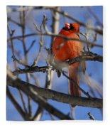 Mr. Red Beauty Fleece Blanket