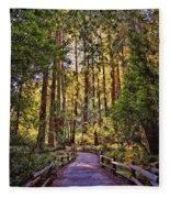 Muir Woods Fleece Blanket