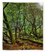 Muir Woods Rejuvenation Fleece Blanket