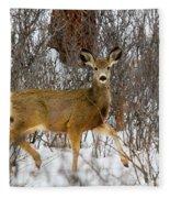 Mule Deer Portrait In Heavy Snow Fleece Blanket