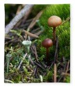 Mushroom Tundra Fleece Blanket
