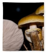 Mushrooms At Sundown Fleece Blanket