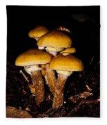 Mushrooms By Night Fleece Blanket