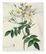 Musk Rose Fleece Blanket