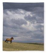 Mustang And Stormy Sky Fleece Blanket