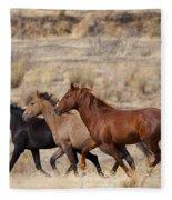 Mustang Trio Fleece Blanket