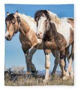 Mustang Twin Stallions Fleece Blanket