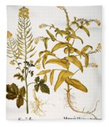 Mustard Plant, 1613 Fleece Blanket