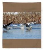 Mute Swan Chasing Canada Goose I Fleece Blanket