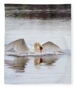 Mute Swan Swim Fleece Blanket