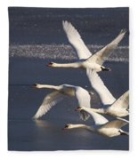 Mute Swans In Flight Fleece Blanket