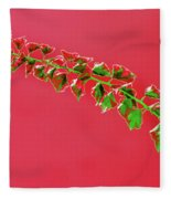 My Bougainvillea Aurea 4 Fleece Blanket