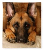 My Loyal Friend Fleece Blanket