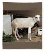 My Ram Fleece Blanket