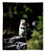 My Tree Stump Pedestal Fleece Blanket