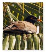 Myna In The Palms Fleece Blanket