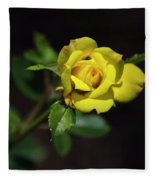 Mystic Yellow Rose Fleece Blanket