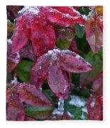 Nandina Winter Ice Fleece Blanket