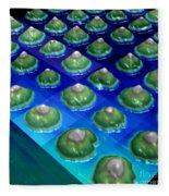 Nanoparticles, Lithium Metal, Afm Fleece Blanket