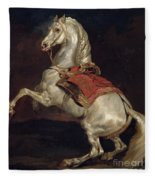 Napoleon's Stallion Tamerlan Fleece Blanket