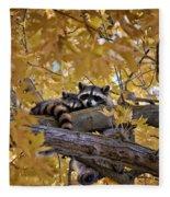 Napping Bandits Fleece Blanket